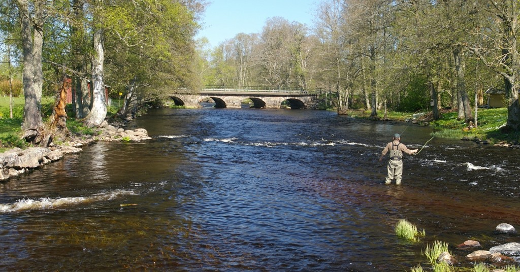 River Fishing Tips for Beginners
